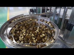 automatická pístová omáčka servo, med, marmeláda, plnicí linka s vysokou viskozitou kapaliny